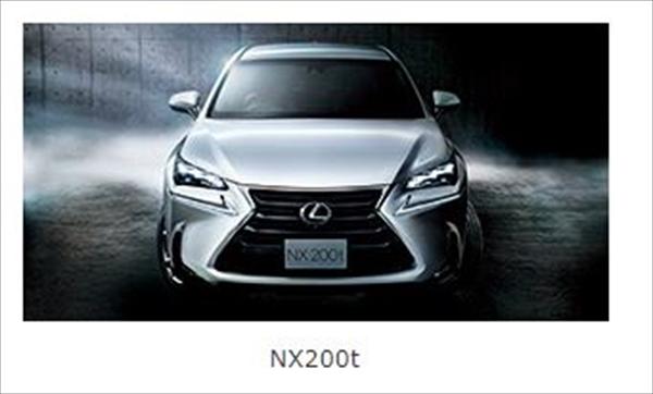 NX200_R.jpg